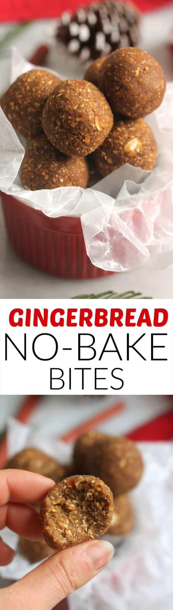 Gingerbread No-Bake Bites....a quick and easy treat that's vegan, gluten-free and packed with a secret healthy ingredient...beans!