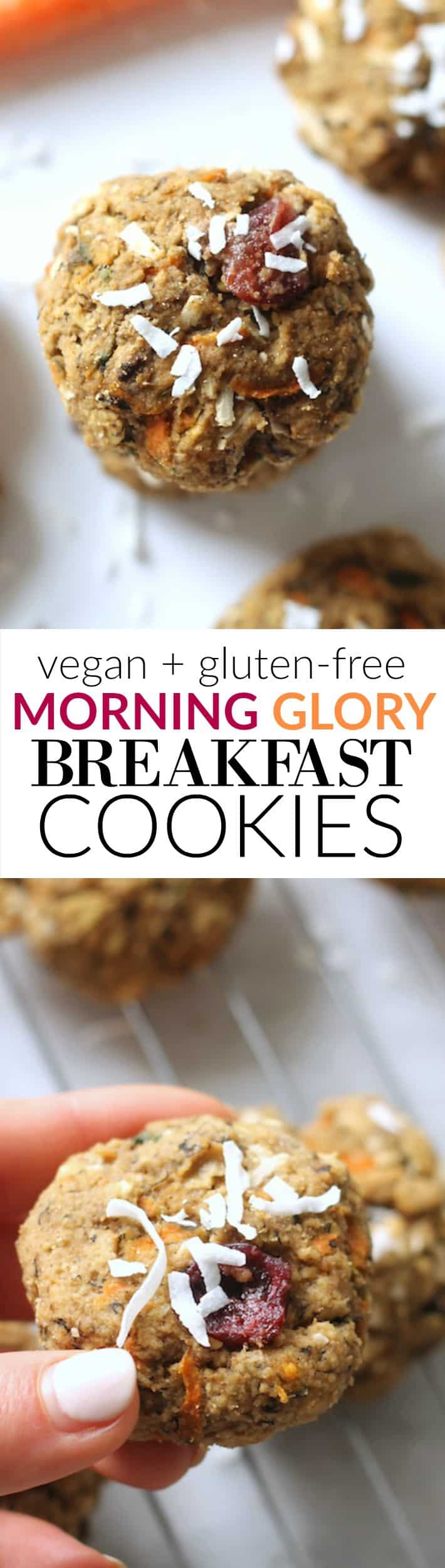 Morning Glory Breakfast Cookies...vegan, gluten-free, healthy, and flourless!