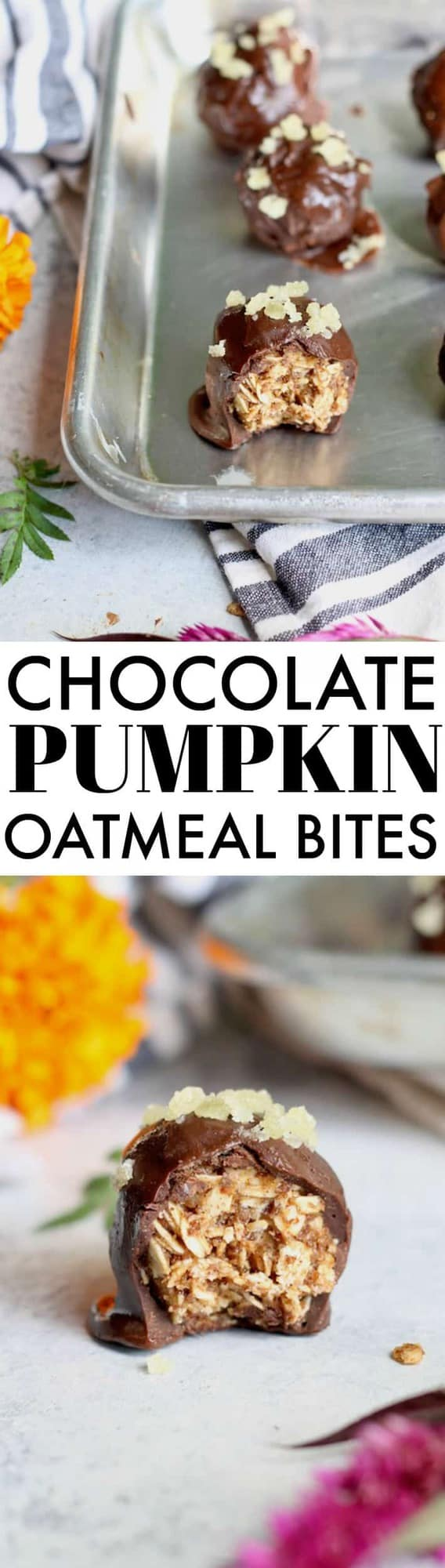 These super easy and delicious Chocolate Covered Pumpkin Spice Oatmeal Bites are a whole grain snack doubles as a dessert packed with fall flavor!
