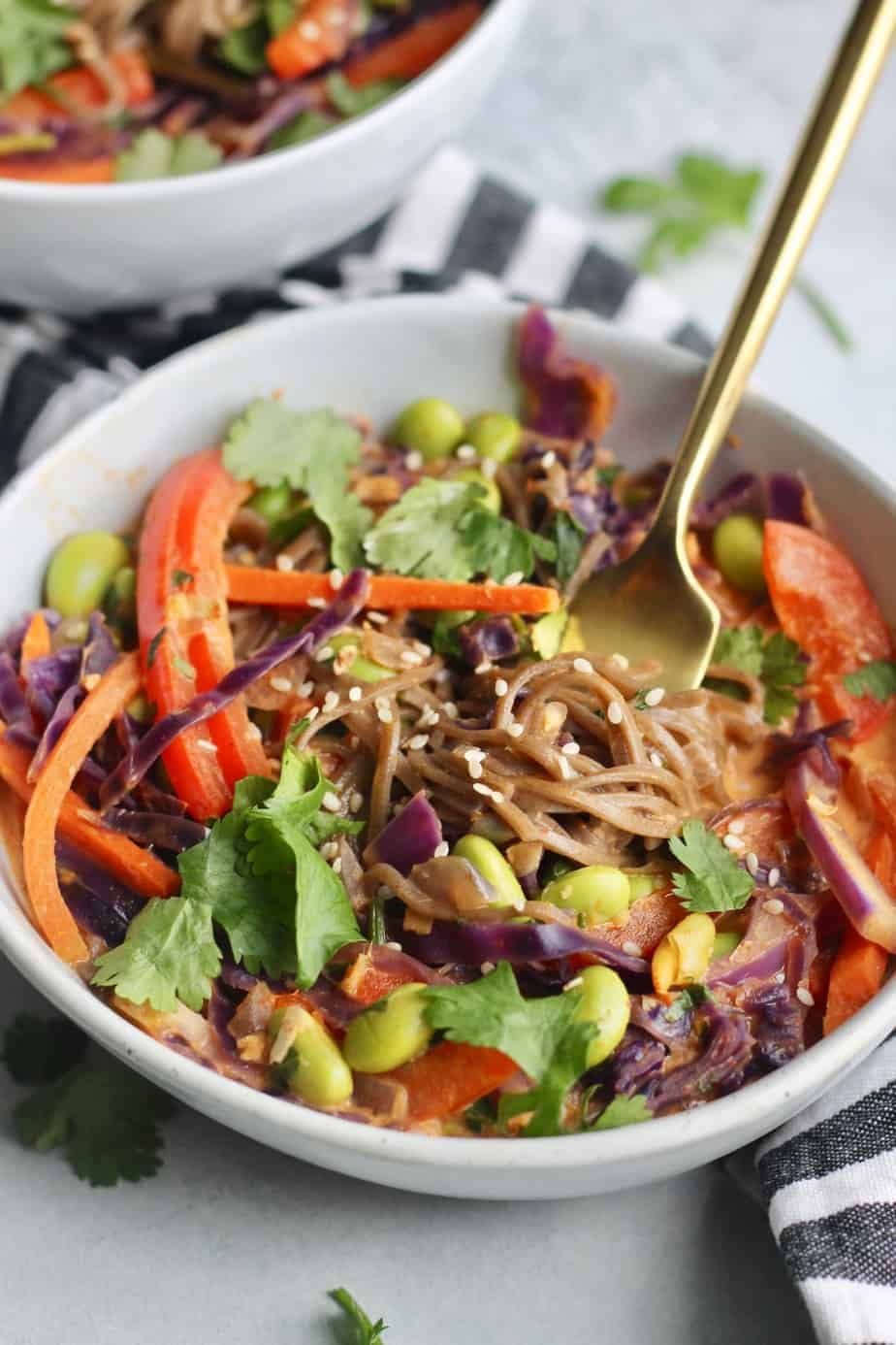 Loaded with bright veggies and buckwheat soba noodles in a creamy curry sauce, these Thai Curry Soba Noodle Bowls are a colorful, healthy meal. Makes great leftovers!
