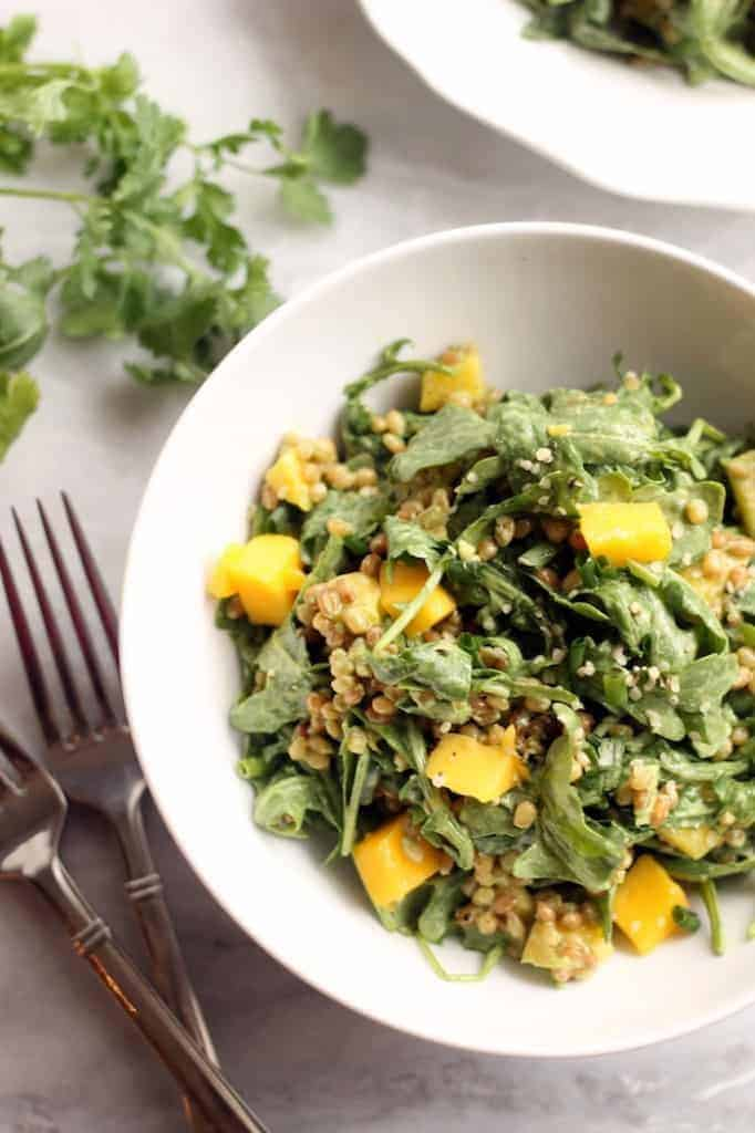 This refreshing Mango, Wheat Berry, and Arugula Salad with Creamy Cilantro Lime Dressing makes the best plant-powered lunch!